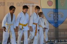 "Demonstratie de judo la ""Zilele com. Ceuasu de Campie"""