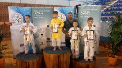 Finala Campionatului National U10 – U11, Baia Mare